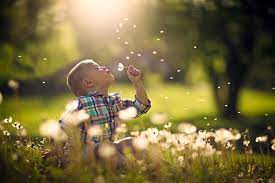 عکاسی کودک در طبیعت